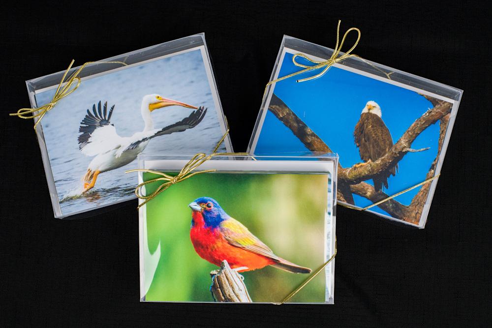 Note cards Series II 20210130 0005