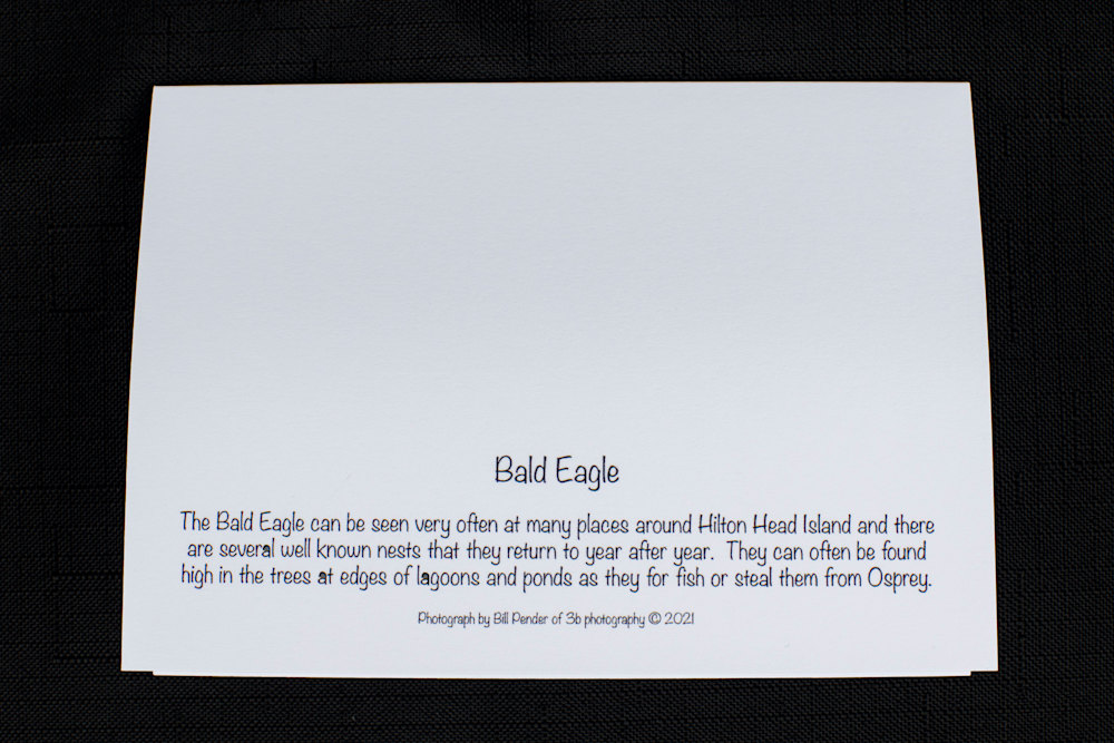 Note cards Series II 20210130 0012