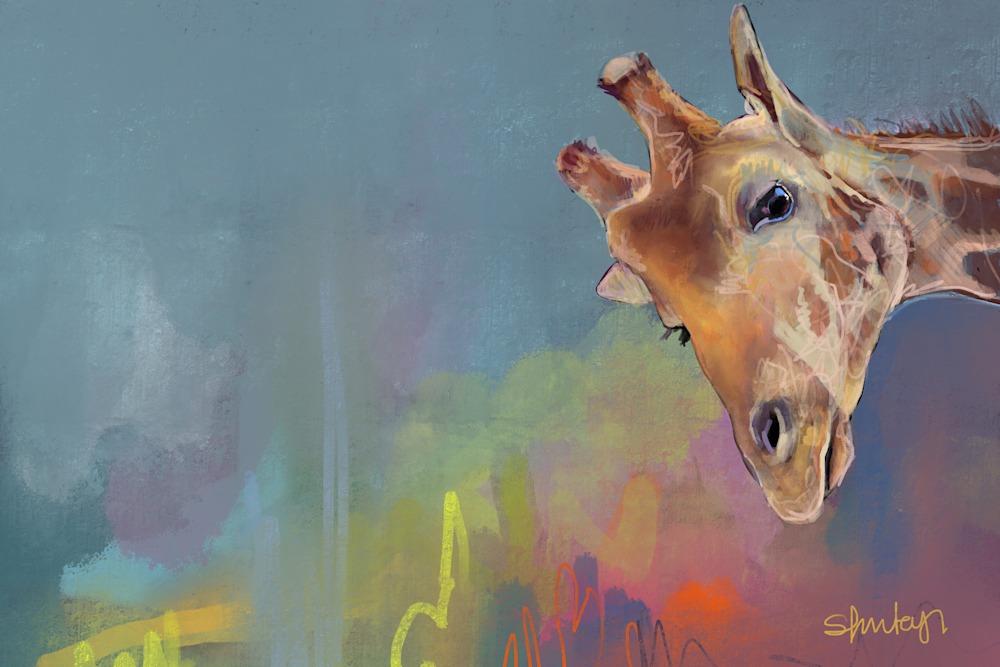 Giraffe high res print 80x60cm