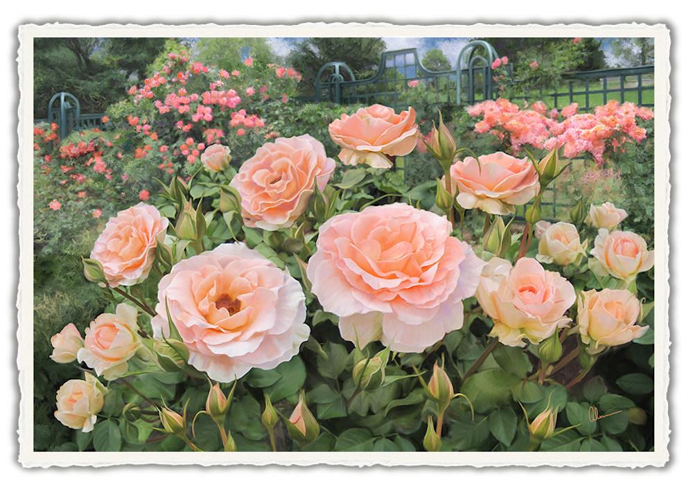140102 4x6rr Peggys Rose Garden front