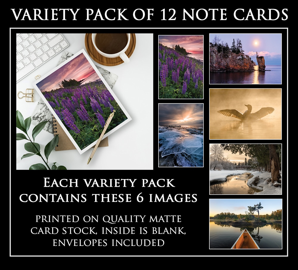 Greeting Card Pack 2   12 Cards