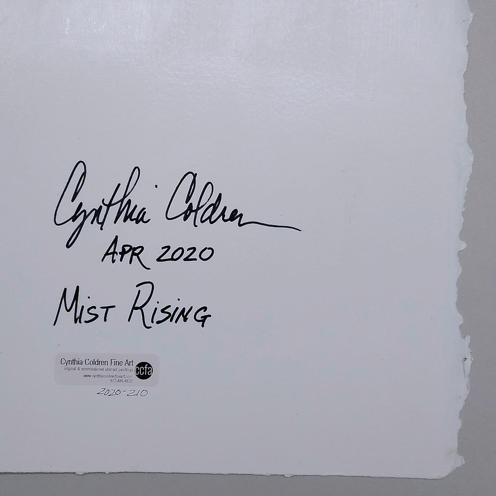 2020 210 Mist