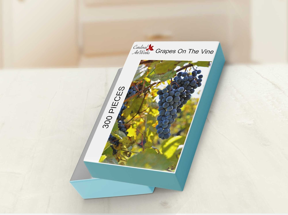 Grapes On The Vine Box