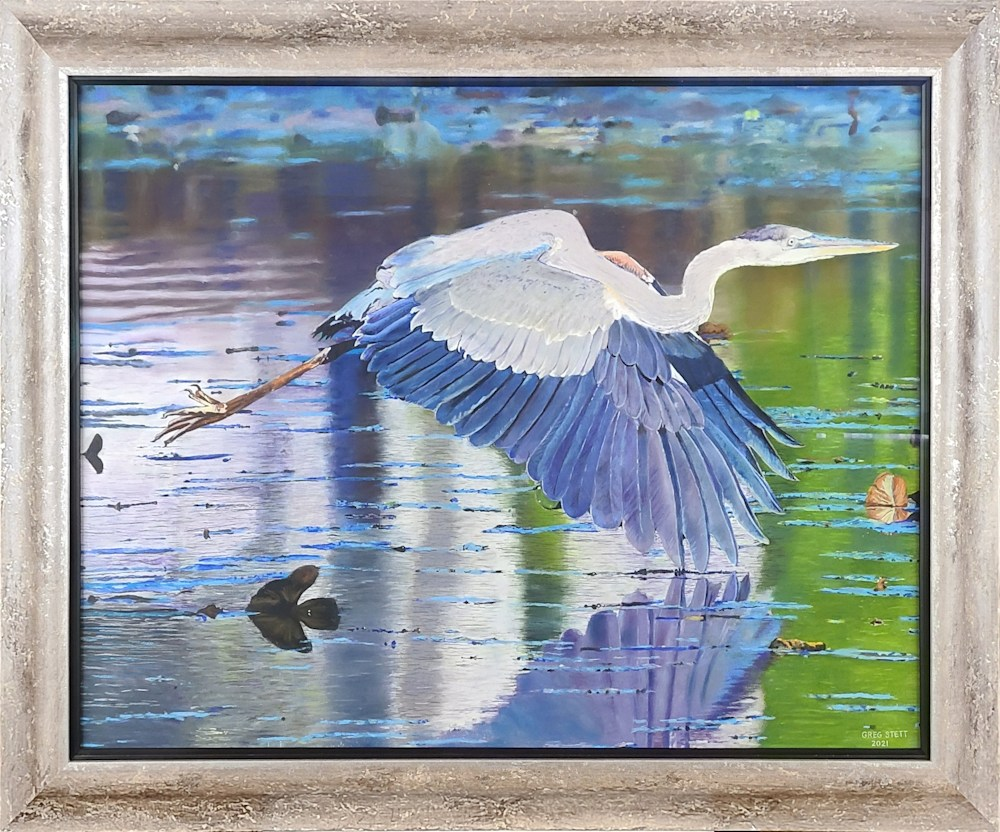 Swooping Heron (framed)