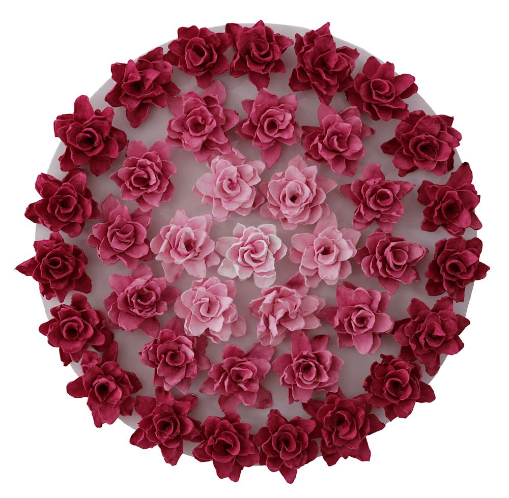 mandala rosy orig white background