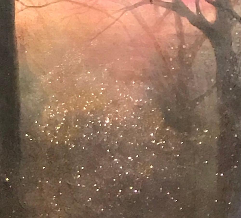 wilderness of light copy