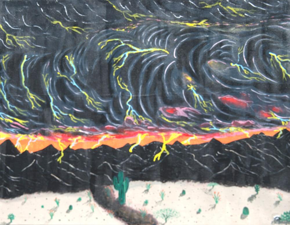 Skunk in Monsoon (1)