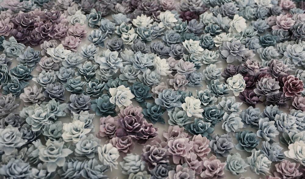 apaptite and purpurite detail