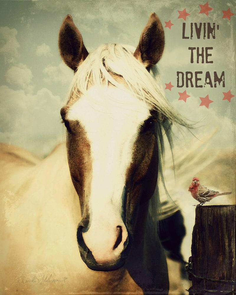 HORSE AND BIRD DREAM V s