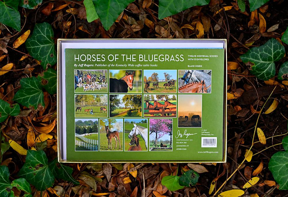 BG Horses cards9941 1400