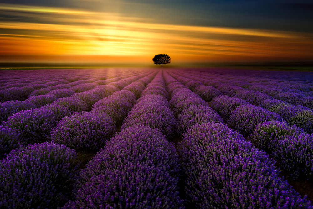 Sunset in Provence
