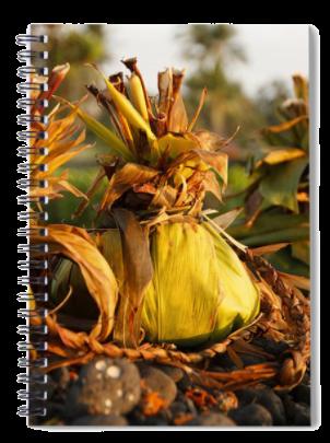 Hookupu spiral notebook