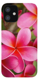 Pink Plumeria Phone Case