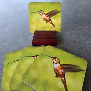 Hummingbird Coaster set2
