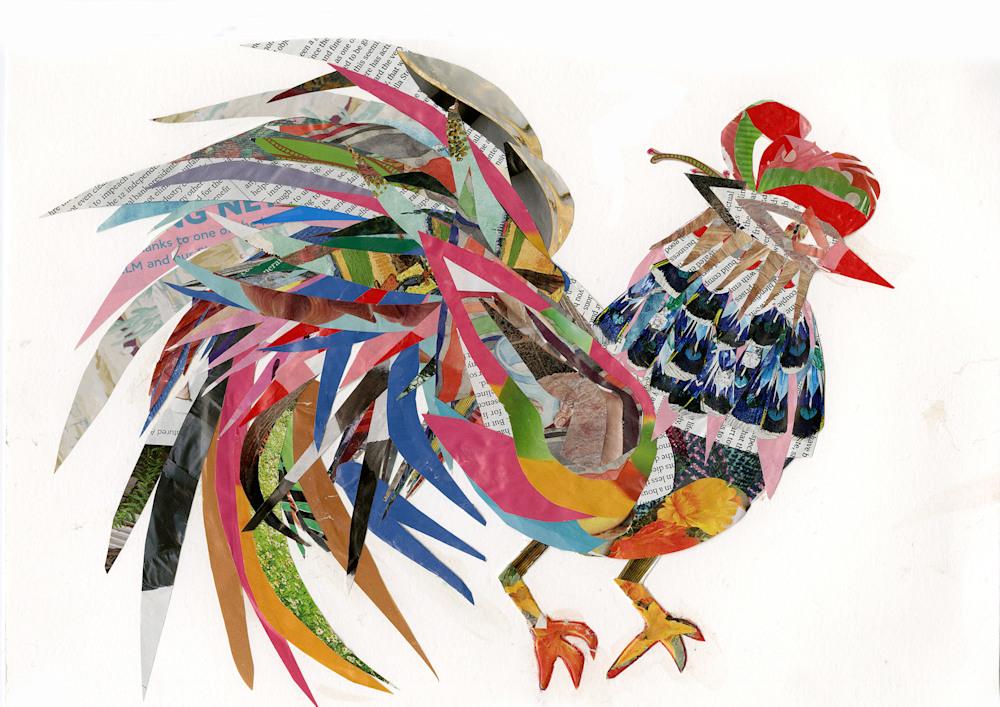 Rooster300DPIImage
