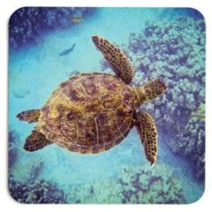 Swimming Honu Coasters