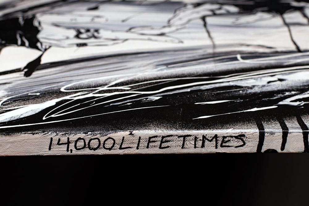 14000Lifetimes2