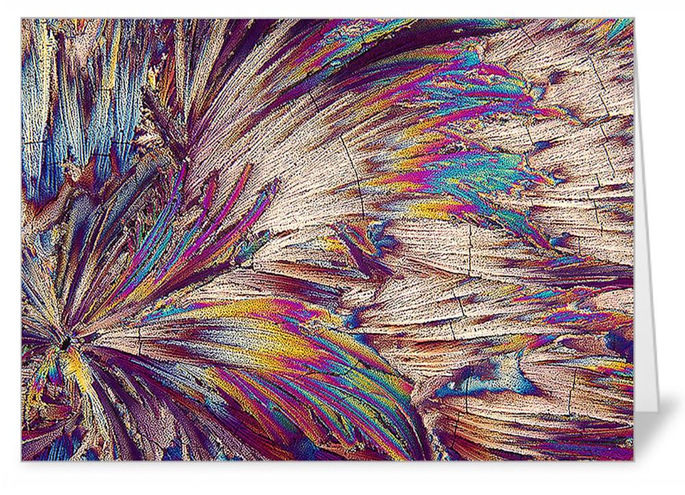 Feathers   malic acid   Note Card
