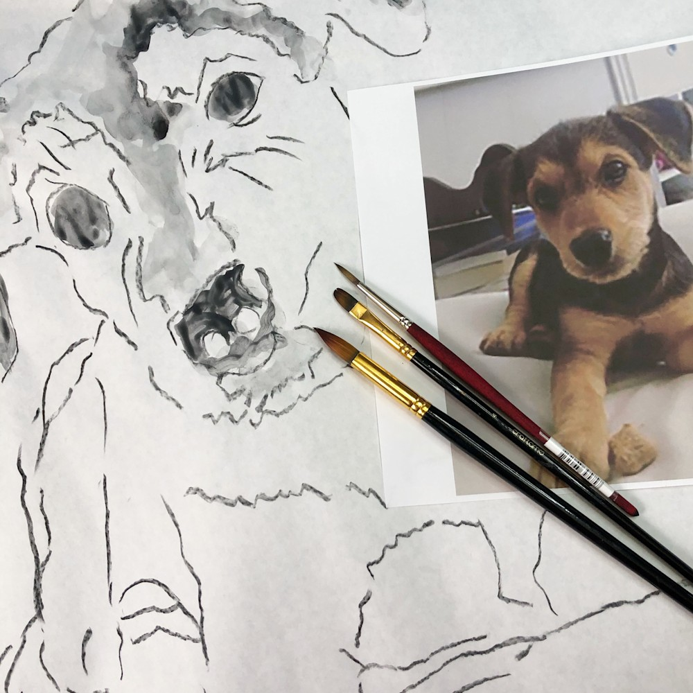 Custom pet portraits page2
