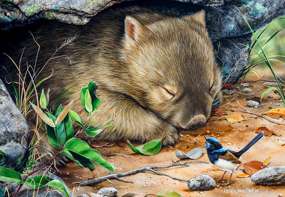 Deep Sleeper Wombat NJP