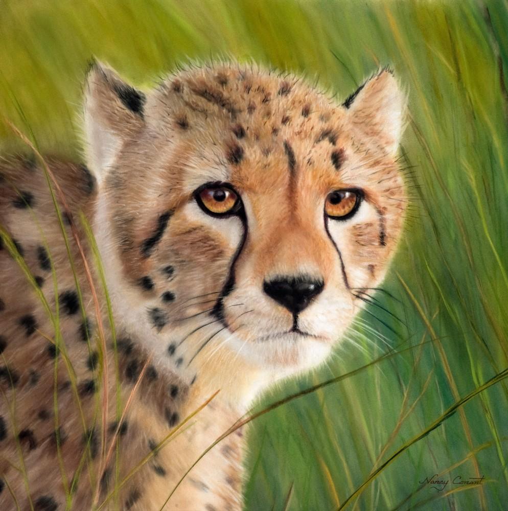 Cheetah Beasley HR