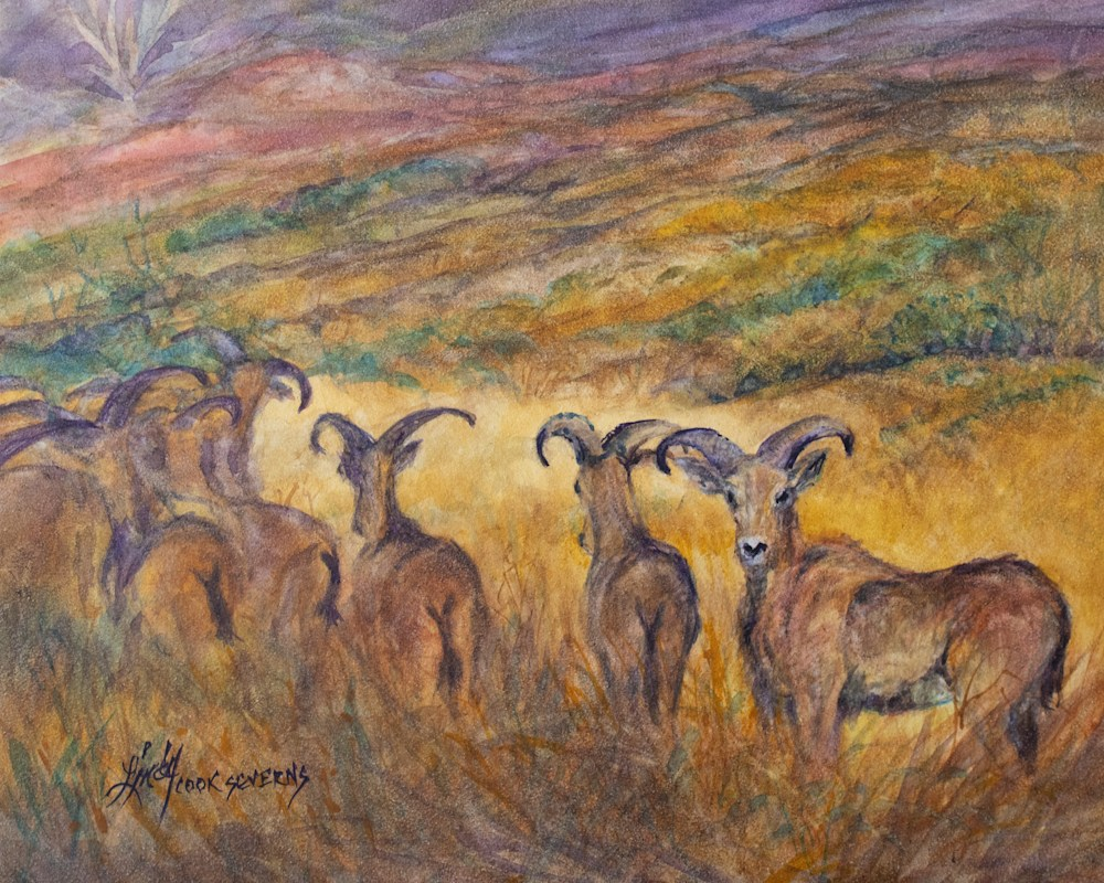 2a21 Blending In 8x10 v watercolor Lindy C Severns 21