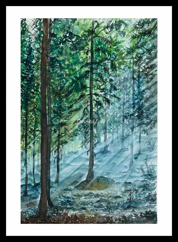 Misty Woods Originals