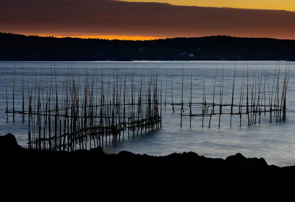 0Z7 5280 Fish Weir at Sunrise LE