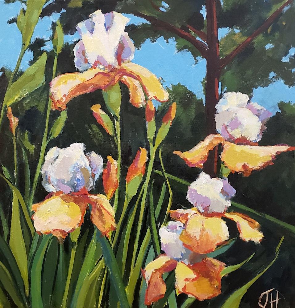 Jenn Hallgren Iris Garden XII