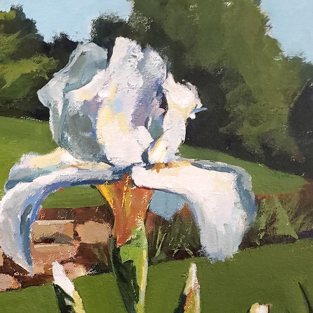 Jenn Hallgren Presby Iris detail1