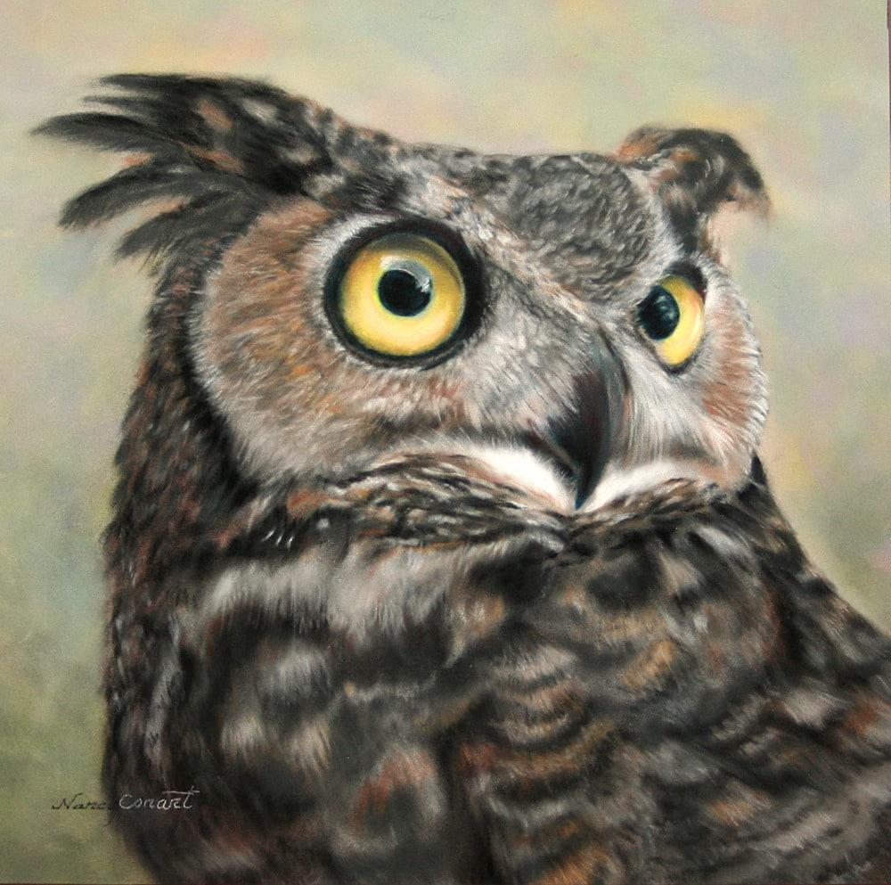 Lionel The Owl HR