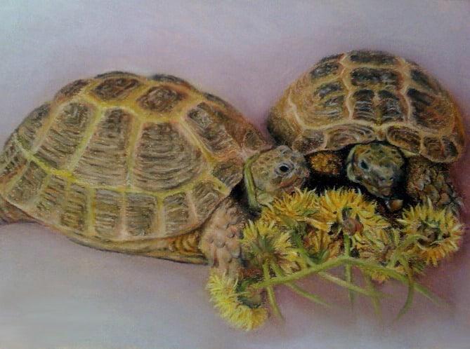 Shelly & Sheldon