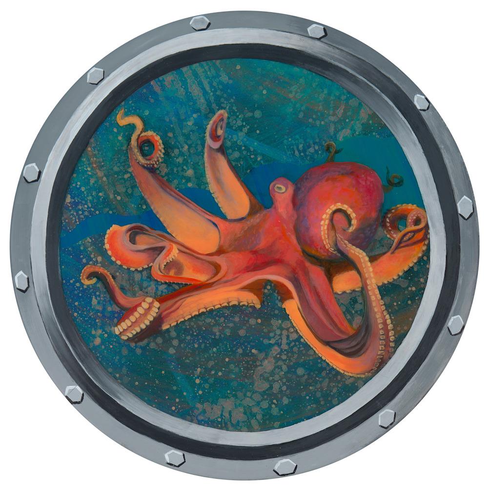 Octopus porthole