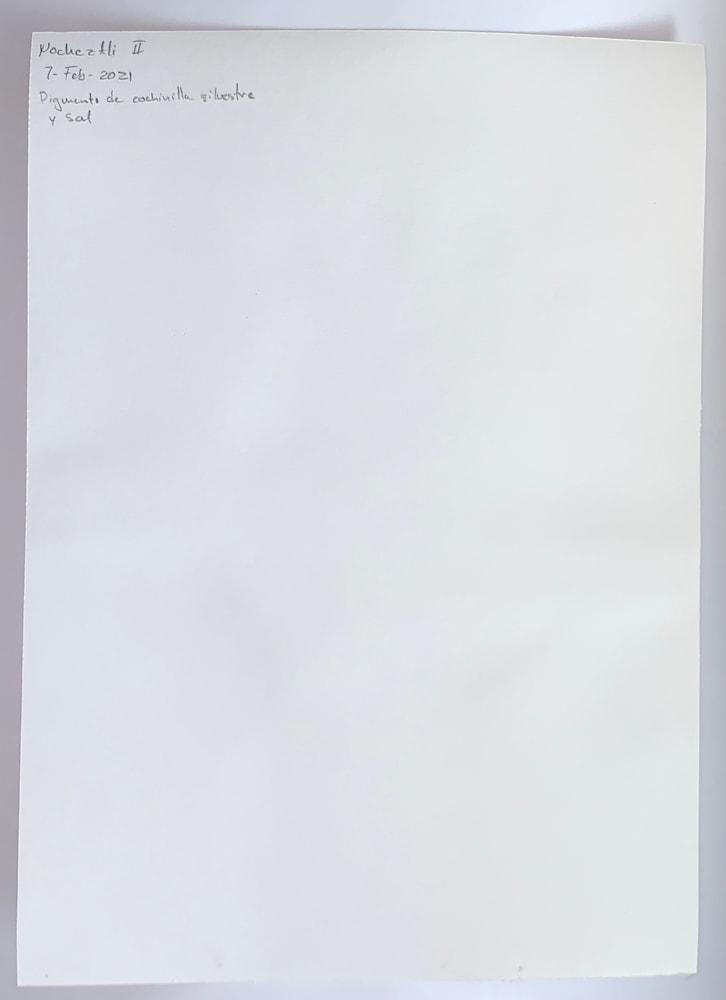 IMG 5365