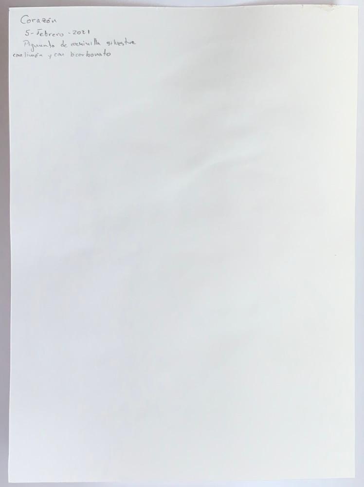 IMG 5376