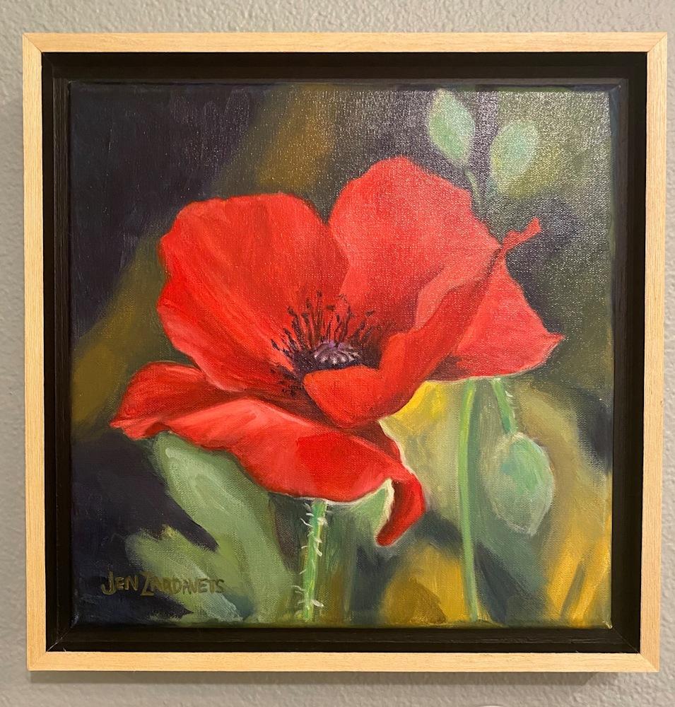 Red poppy framed