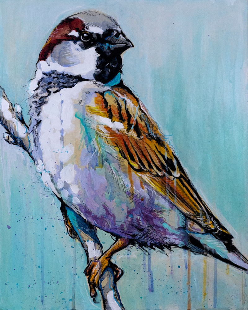 Male House Sparrow Painting FINAL original