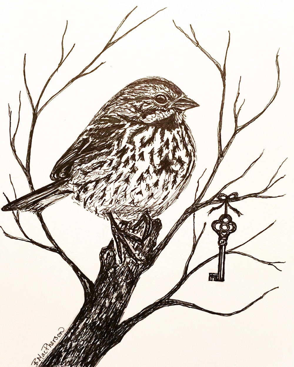 Song Sparrow with Antique Key Illustration by Becky MacPherson