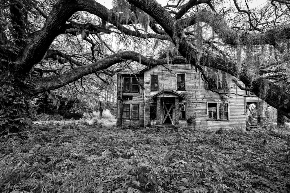 This old plantation home sits decaying beneath a sprawling live oak tree in the South Carolina Lowcountry.