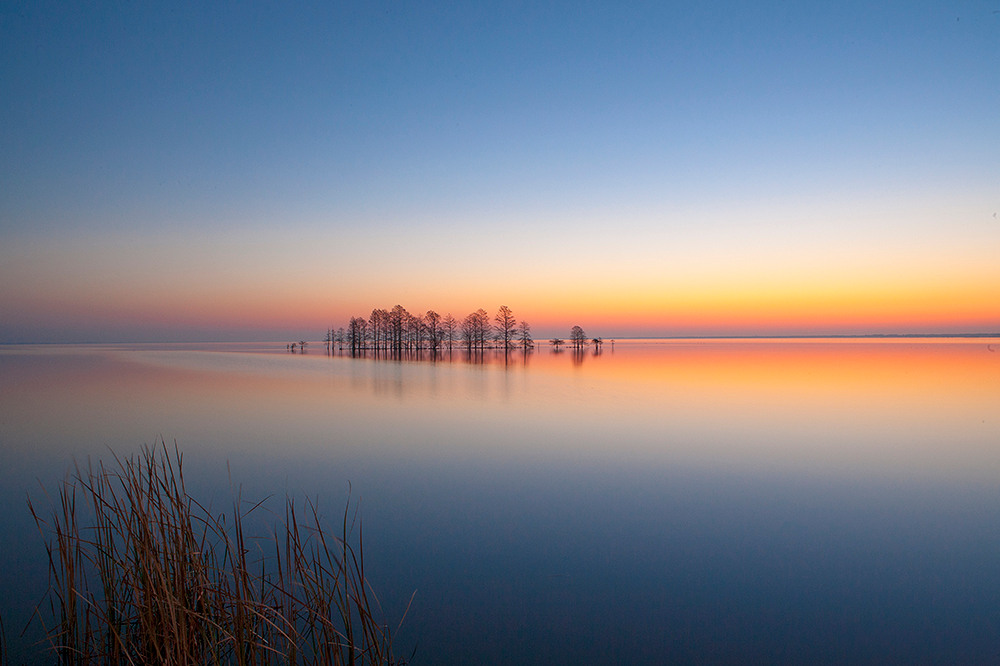 Lake Mattamuskeet Sunrise