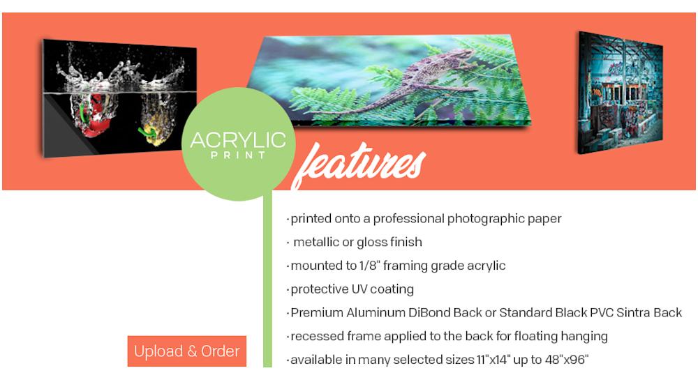Facemount Acrylic Art Prints Online Canada   Print Partner