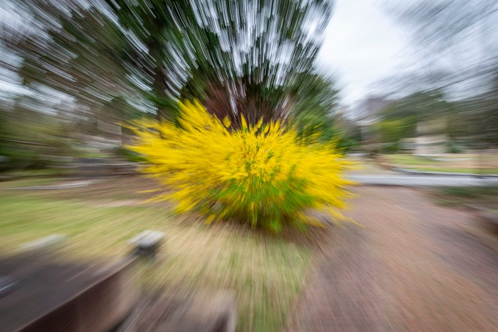 Some surrounding details are still evident in this partial zoom burst
