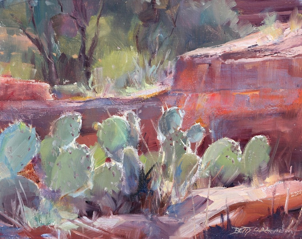 Cactus Lights | Southwest Art Gallery Tucson