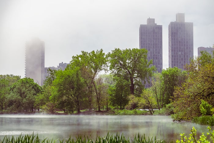 Fog and low clouds shroud the buildings in Lincoln Park, Chicago