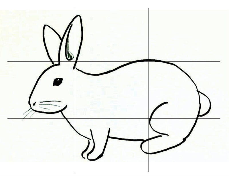 Bunny with Grid