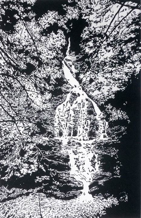 Deep Wood Falls II, linocut print by William H. Hays