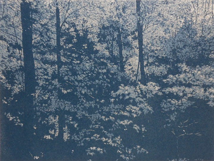 Forest In Moonlight impression 5, linocut print by William H. Hays