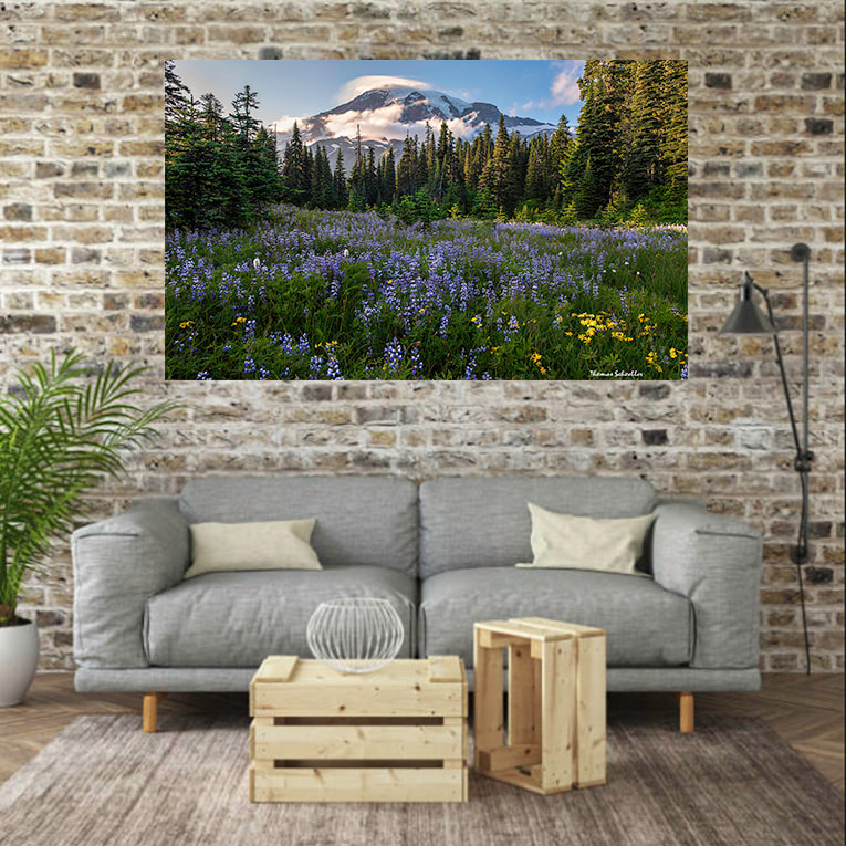Wild Lupine beneath Mt Rainier as a Metal print on display