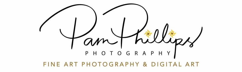 Pam Phillips Photography New Logo