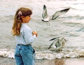 Little girl feeding seagulls